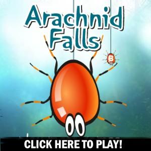 Arachnid Falls - Jogo de Acção